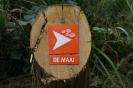 Ommetje De Maai_5